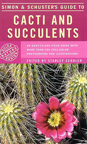 Cacti and succulents - Mariela Pizzetti