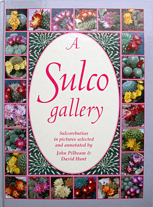 A Sulco gallery - John Pilbeam & David Hunt